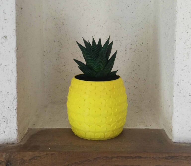 pineapple planter with an aloe