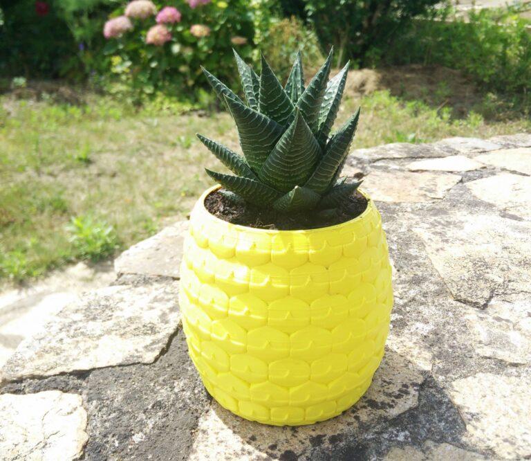 Pineapple planter, succulent planter